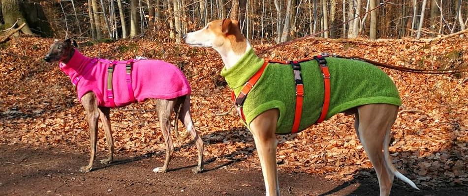 Hunde-Strick-Pulover mit Sicherheitsgeschirr